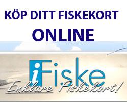 Fiskekort Online